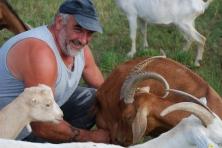 Felice con le sue capre