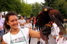 Noemi alle prese con un falco
